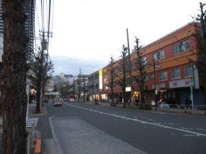 平成30年11月23日 夜のとちの木通りです