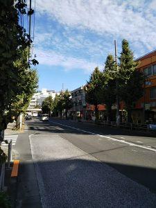 平成30年11月1日 今朝のとちの木通りです。