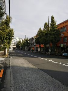 平成30年11月5日 今朝のとちの木通りです
