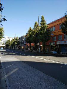 平成30年11月10日 今朝のとちの木通りです