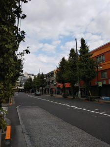 平成30年11月11日 朝のとちの木通りです