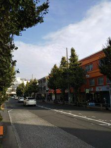平成30年11月12日 朝のとちの木通りです