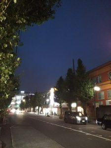平成30年11月13日 夜のとちの木通りです