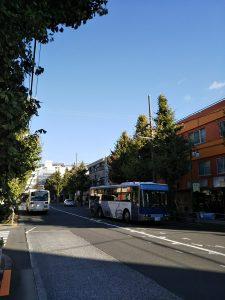 平成30年11月16日 朝のとちの木通りです
