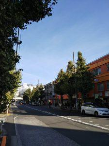 平成30年11月17日 朝のとちの木通りです