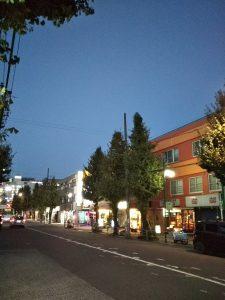 平成30年11月17日 夜のとちの木通りです