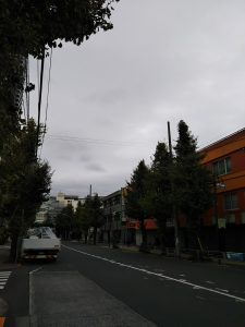 イマソラ 平成30年11月18日 朝のとちの木通りです
