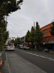 イマソラ 平成30年11月19日 朝のとちの木通りです