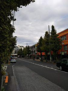 平成30年11月20日 朝のとちの木通りです