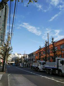 イマソラ 平成30年11月26日 朝のとちの木通りです