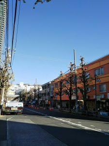 平成30年11月30日 今朝のとちの木通りです