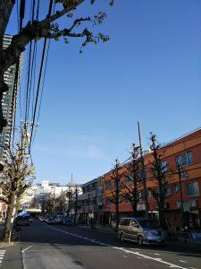 イマソラ 平成30年12月1日 朝のとちの木通りです