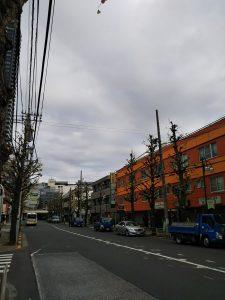 平成30年12月2日 朝のとちの木通りです