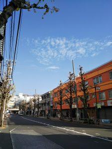 平成30年12月4日 朝のとちの木通りです