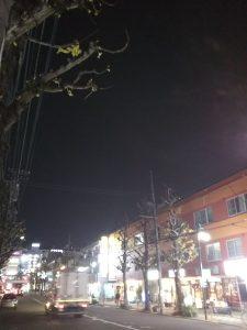 平成30年12月7日 夜のとちの木通りです