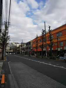 平成30年12月8日 朝のとちの木通りです