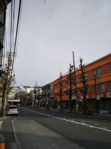 平成30年12月9日 朝のとちの木通りです