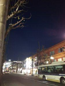 平成30年12月9日 夜のとちの木通りです