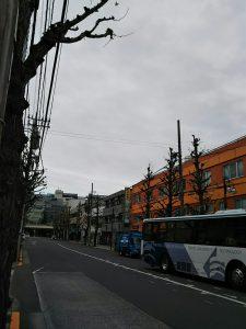 平成30年12月10日 朝のとちの木通りです