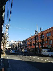 平成30年12月14日 今朝のとちの木通りです