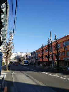 平成30年12月15日 朝のとちの木通りです