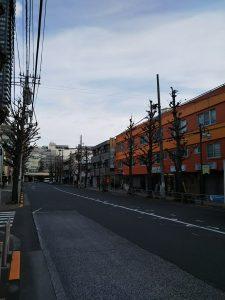 平成30年12月16日 朝のとちの木通りです
