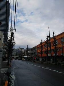 平成30年12月17日 朝のとちの木通りです