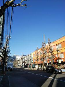 平成30年12月17日 昼のとちの木通りです