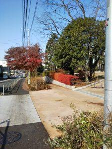 富士森公園西側の道