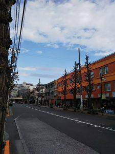 平成30年12月22日 朝のとちの木通りです