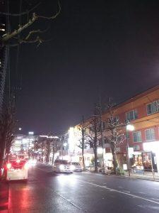 平成30年12月22日 夜のとちの木通りです