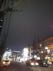 平成30年12月23日 夜のとちの木通りです