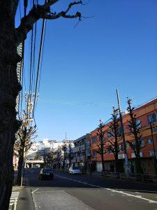 平成30年12月24日 朝のとちの木通りです