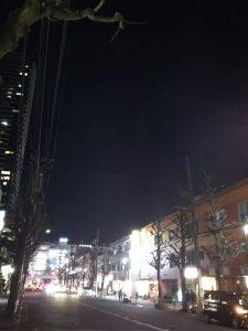 平成30年12月25日 夜のとちの木通りです