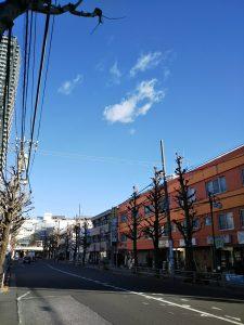 平成30年12月28日 朝のとちの木通りです