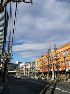 平成30年12月28日 とちの木通りです