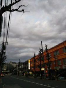 平成31年1月25日 夜のとちの木通りです