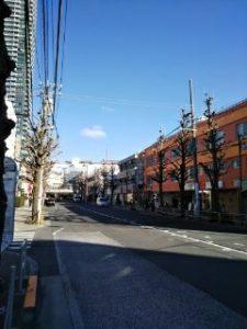 平成31年1月27日 朝のとちの木通りです