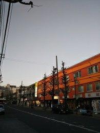 平成31年1月27日 夜のとちの木通りです