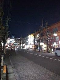 平成31年1月29日 夜のとちの木通りです