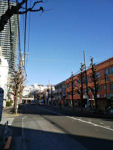 平成31年1月4日 朝のとちの木通りです