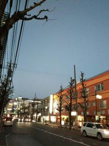 平成31年1月4日 夜のとちの木通りです