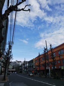 平成31年1月6日 朝のとちの木通りです