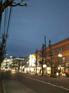 平成31年1月6日 夜のとちの木通りです