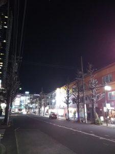 平成31年1月7日 夜の土地の木通りです