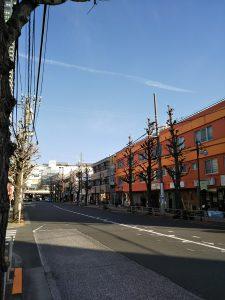 平成31年1月8日 朝のとちの木通りです