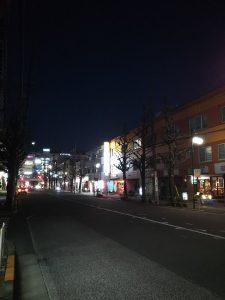 平成31年1月8日 夜のとちの木通りです