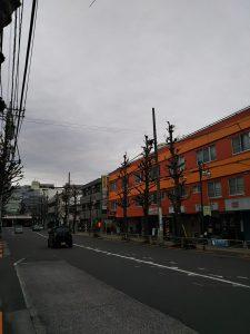 平成31年1月12日 朝のとちの木通りです
