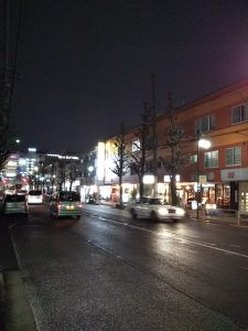 平成31年1月12日 夜のとちの木通りです