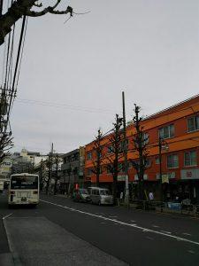 平成31年1月15日 朝のとちの木通りです